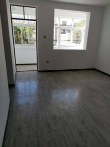 2室1厅1卫53m²精装修