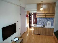 1室1厅1卫31m²精装修